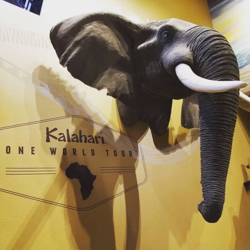 Kalihari Elephant